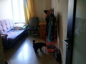 Комната Ломоносовский