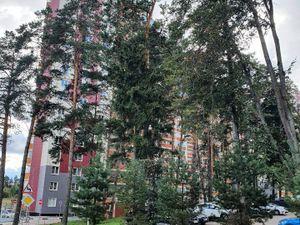 1к квартира